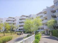 東寺尾ヒルズ85 L棟